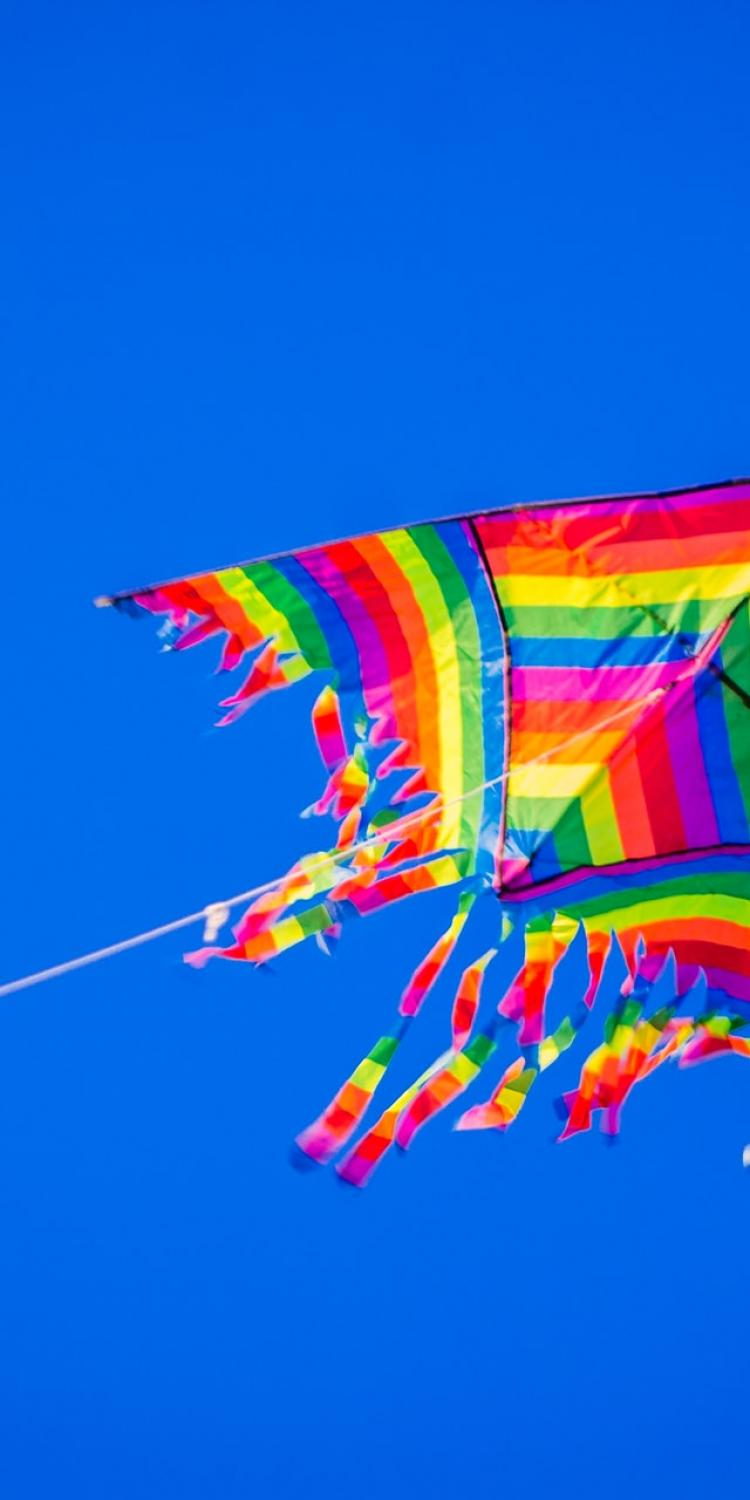 Kite in the sky